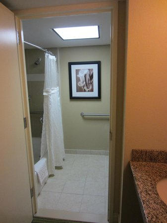 Hilton Orlando Lake Buena Vista : Bathroom
