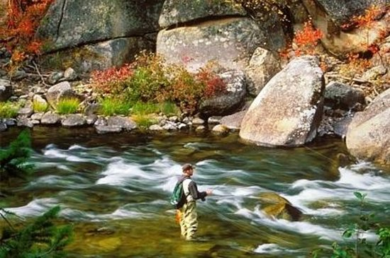 Yosemite sierra fly fishing yosemite national park all for Fishing trips in california