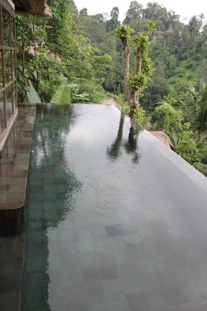 Hanging Gardens of Bali: Our private infinity pool