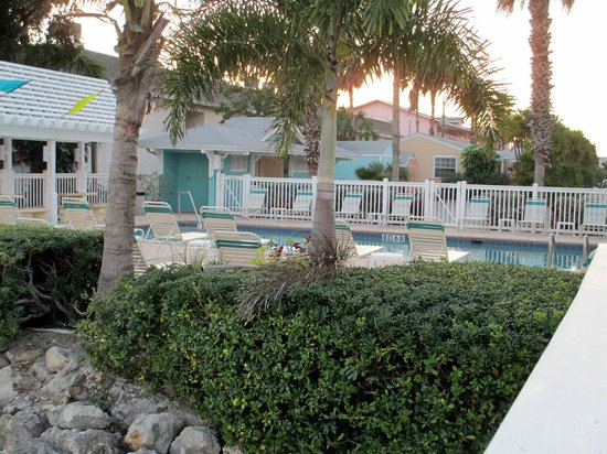 Tradewinds Beach Resort:                   Pool and plams from the dock