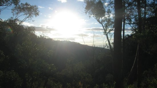 Waterfall Gully: View from the walking trail not far from Chinamans Hut.