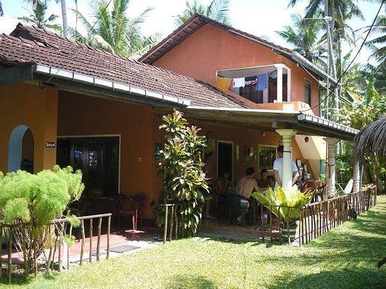 Plantation Surf Inn :                   The guesthouse