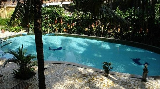 Jeje Resort Bali:                   The pool from my room
