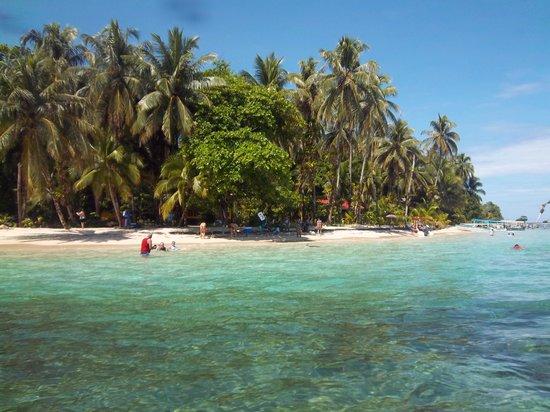 Under sea Panama:                   cayo Zapatillas II