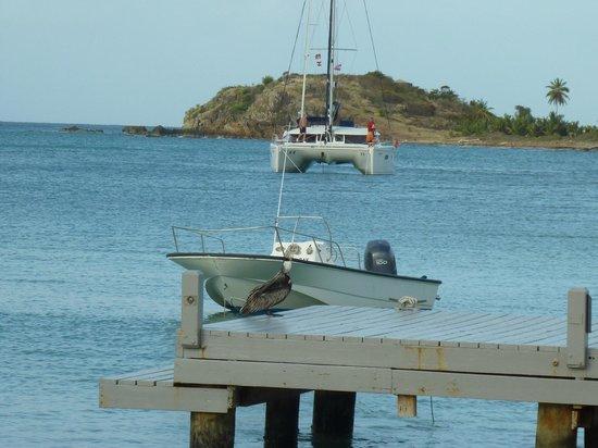 Carlisle Bay Antigua: View from Jetty