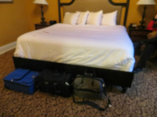 Mansions On Fifth Hotel: Room Luggage on the floor