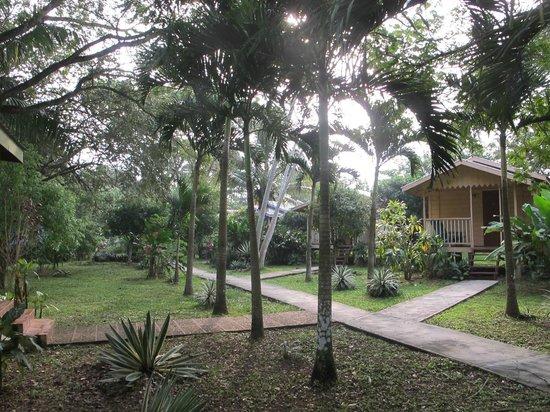 ميداس ريزورت:                   Midas Resort grounds                 
