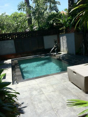 Rama Beach Resort and Villas: the private pool
