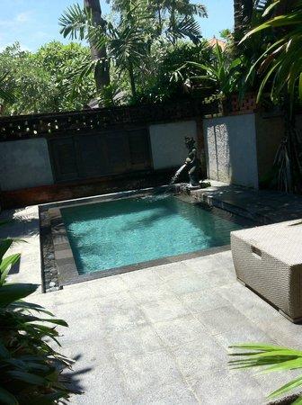 Rama Beach Resort and Villas : the private pool