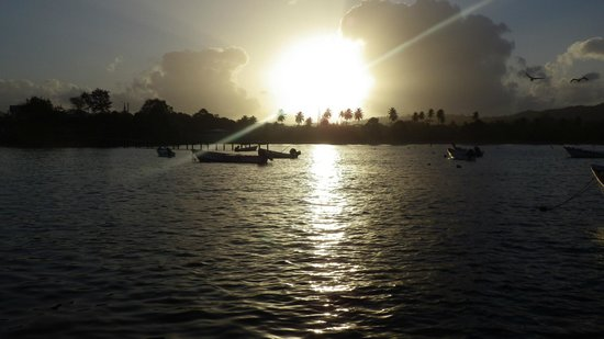 Sandy Point Beach Club : Tobago sunrise
