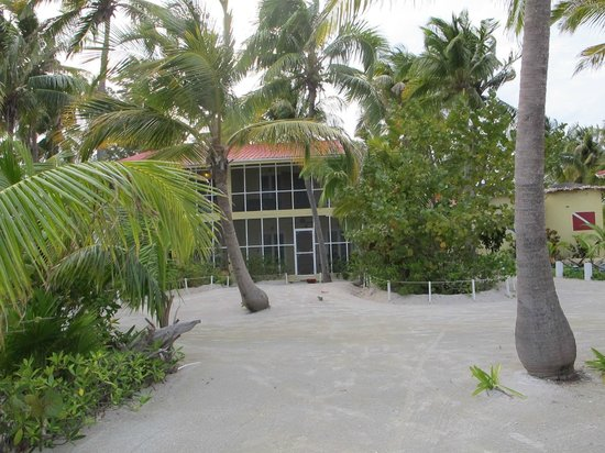 Turneffe Island Resort:                   Hotel grounds