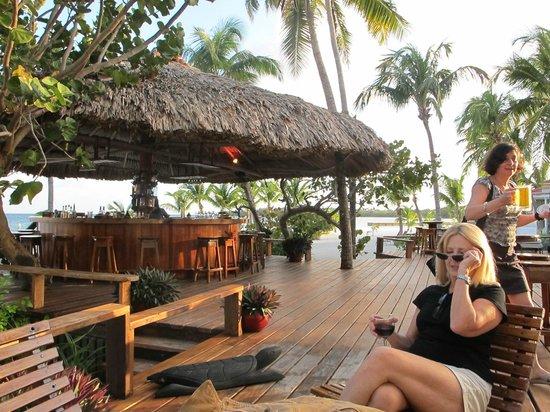 Turneffe Island Resort:                   Bar by the pool
