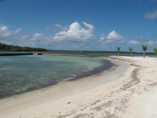 Turneffe Island Resort:                   Beach