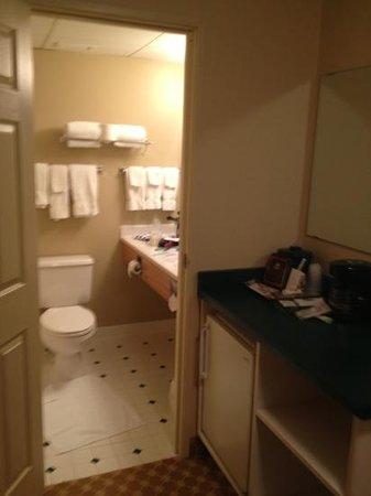 Country Inn & Suites by Radisson, Alexandria, MN:                   bathroom