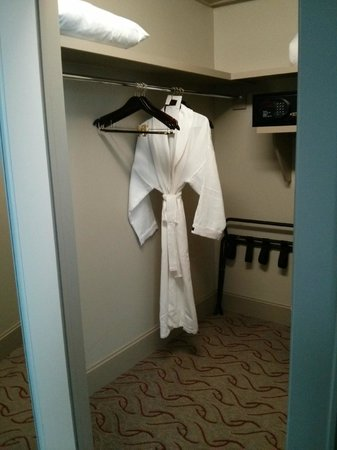 Le Meridien Dallas, The Stoneleigh:                   Closet