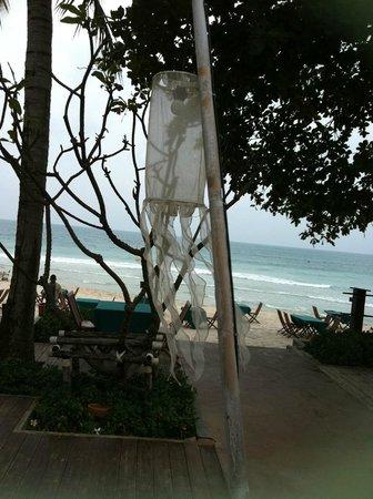 โรงแรมบุรี รสา วิลเลจ:                   Vus depuis la piscine