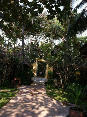 โรงแรมบุรี รสา วิลเลจ:                   Jardin de l'hôtel