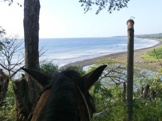 Playa Ponies:                   Looking toward Playa Guiones