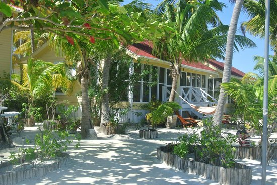 Turneffe Island Resort:                   Cabana