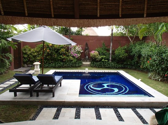 The Dusun:                   Private plunge pool in 1bed villa