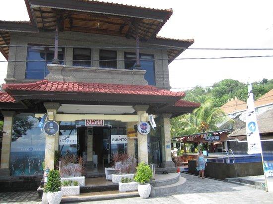 Menyelam - Absolute Scuba Bali