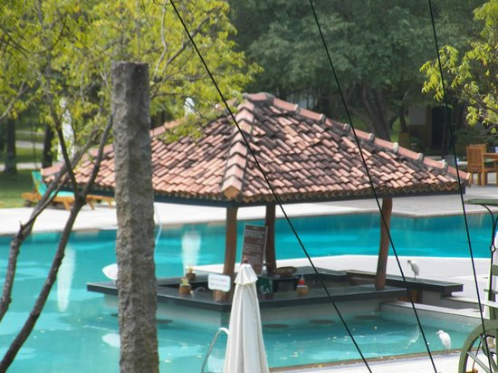 Amaya Lake:                   Pool Bar