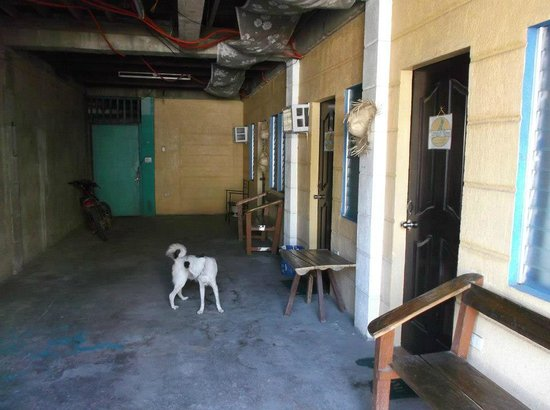 Ralph's Pension House Coron:                   The Garage rooms in the Basement :(