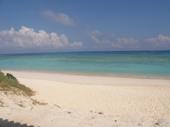 Nishihama Beach:                   綺麗なビーチ