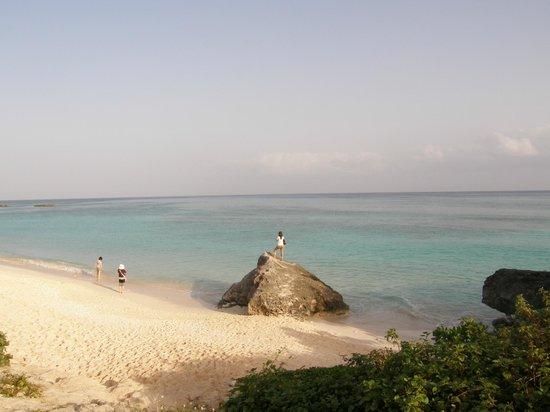 Nishihama Beach:                   早朝のビーチ