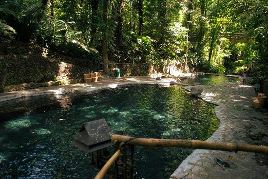 Pool Picture Of Hidden Valley Springs Resort Calauan Tripadvisor