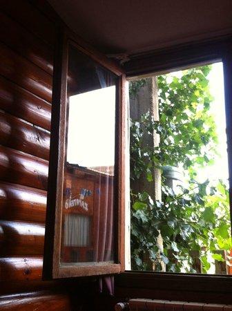 Hostel Buenos Aires:                   Janela do quaro privativo