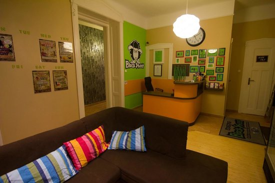 BlackSheep Hostel Budapest: Common room