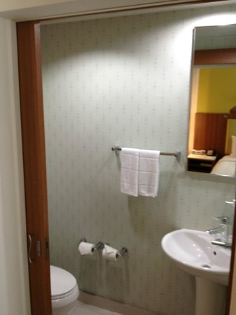 SpringHill Suites McAllen:                   Toilet