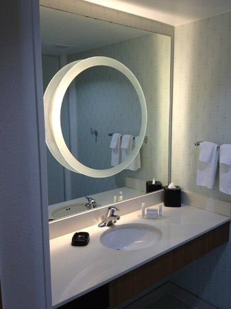 SpringHill Suites McAllen:                   Separate shower room window