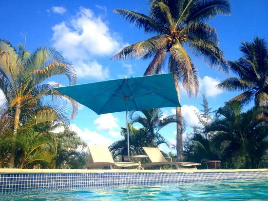 Holiday Inn Resort Vanuatu:                   View from the pool =)