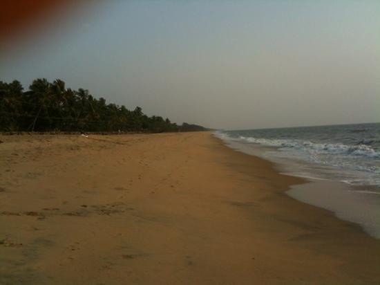 Ocean Breath:                   Cherai Beach