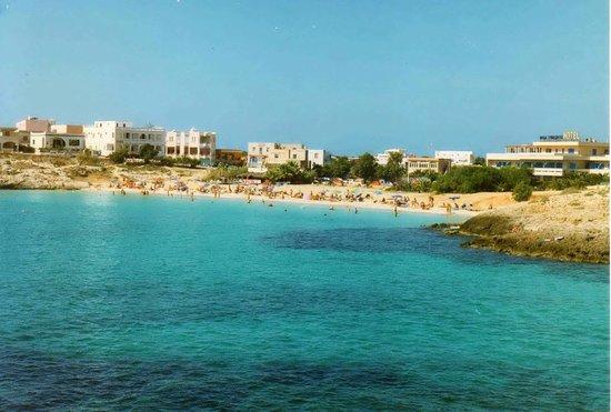 Hotel Baia Turchese :                   Panorama della spiaggia davanti all'hotel.