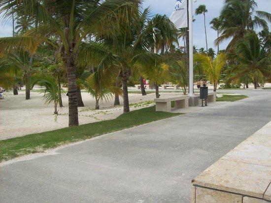 IFA Villas Bavaro Resort & Spa: bord de la plage
