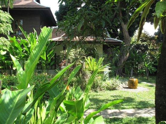 Baan Orapin Bed and Breakfast:                   jardin