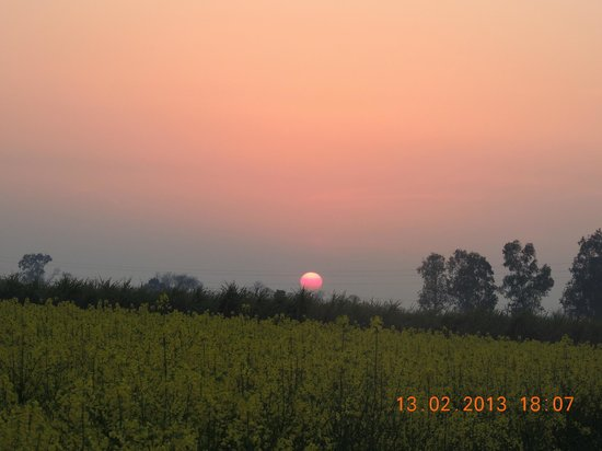 Punjabiyat:                   A lazy sunset