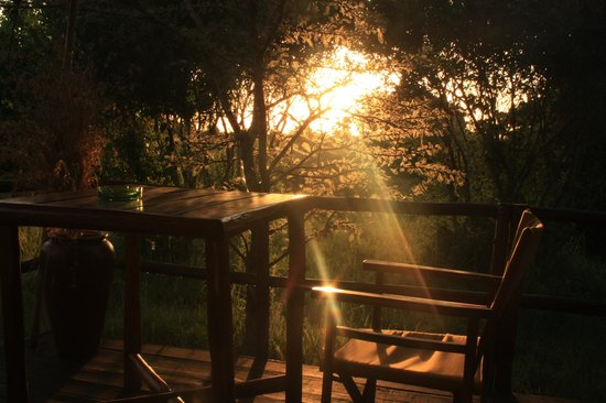 Mara Eden Safari Camp:                   Sundowners from the Room 2 Terrace