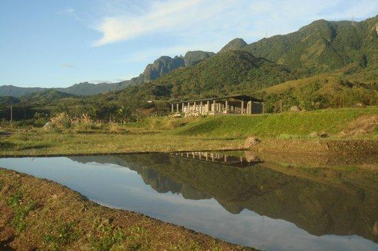 Taitung, Tajwan: 春天美麗的倒影