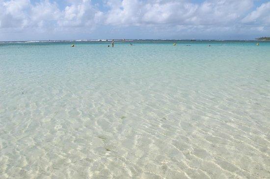 Auberge le grand large : La plage au bout de la rue