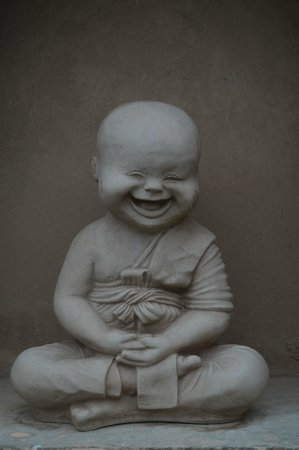 Vivaana:                   The Laughing Buddha