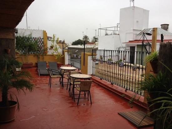 Bed & Breakfast Naranjo :                   terraza del hotel.