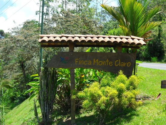 Hacienda Monte Claro:                   Finca Monteclaro