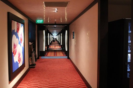 Resorts World Sentosa - Festive Hotel:                   walkway towards the room