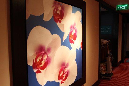 Resorts World Sentosa - Festive Hotel:                   orchids galore