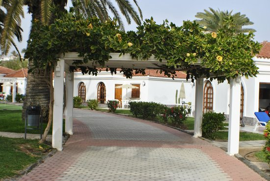 Bungaliw 116 picture of eo suite hotel jardin dorado for Bungalows jardin dorado