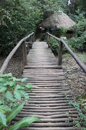 Bodhi Villa:                   Walkway to garden bungalows